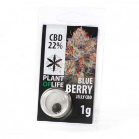 CBD jelly 22% Blueberry POF