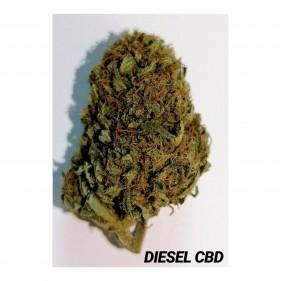Diesel CBD Blüten 5g