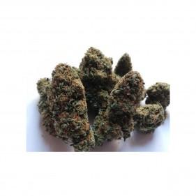 Blueberry CBD Blüten 5g